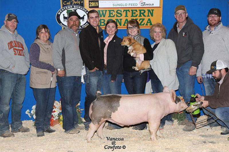 Purple Power Boar Stud, LLC | 2018 WINNERS